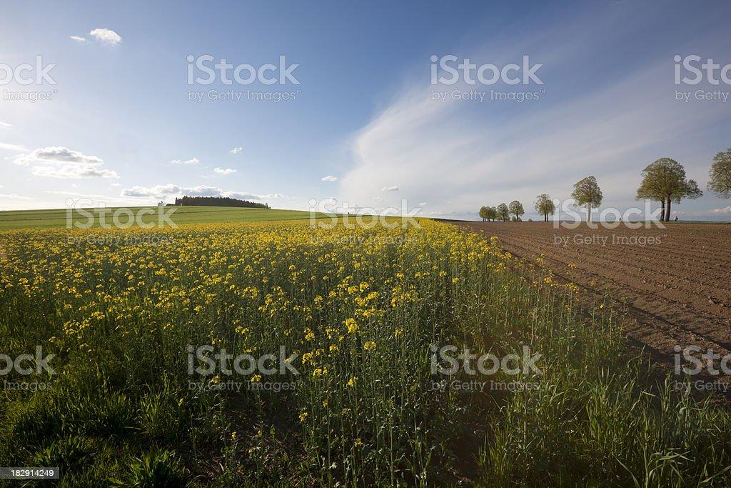 Countryside of Austria royalty-free stock photo