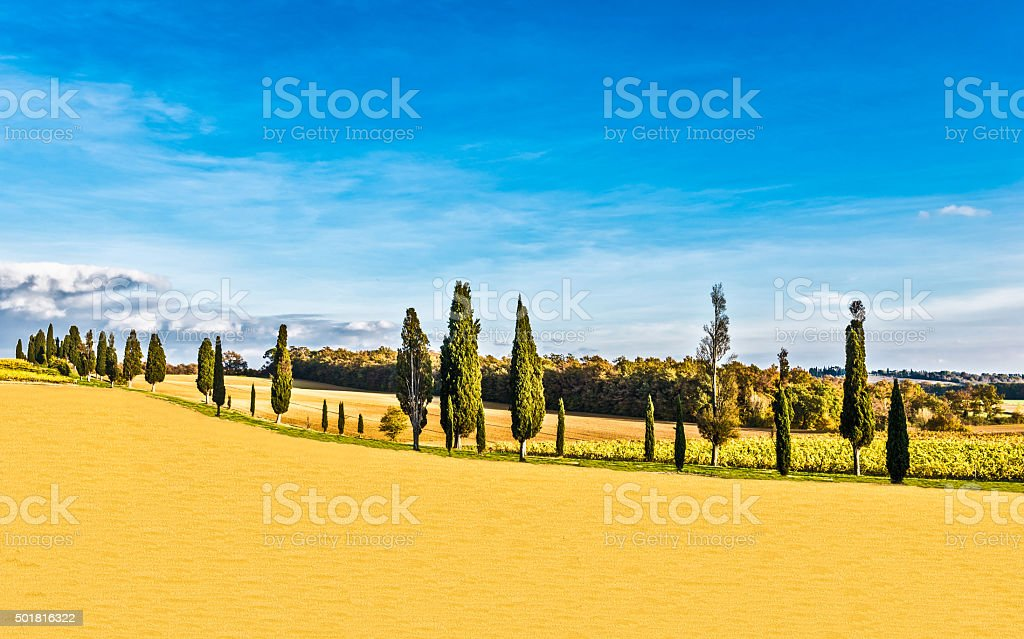 countryside of Lucignano in Tuscany stock photo