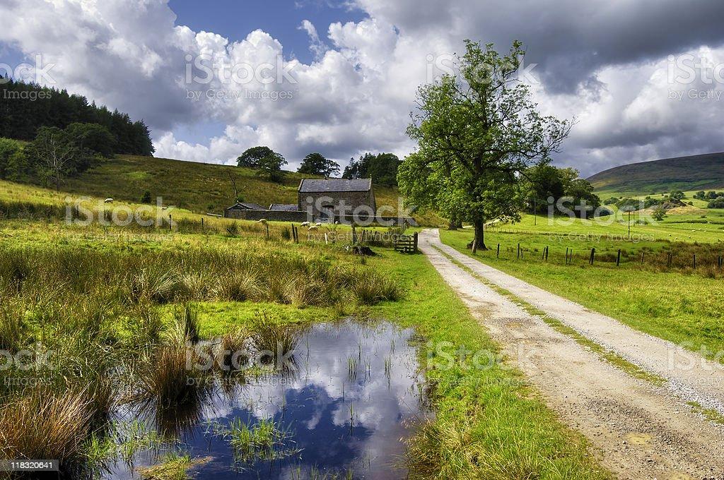 Countryside Path stock photo