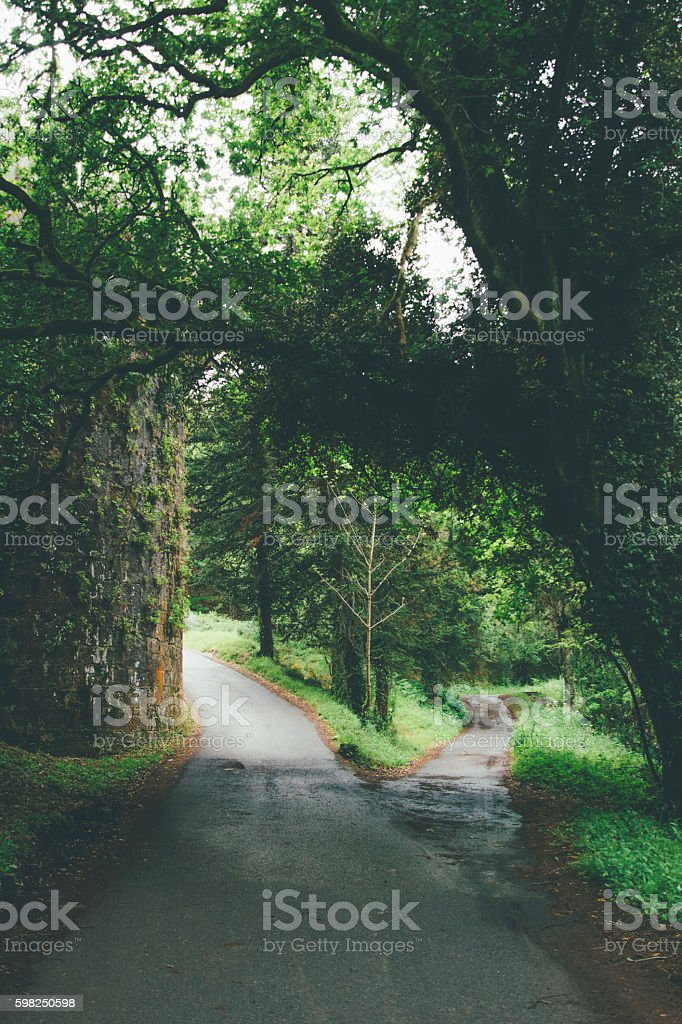 Countryside path stock photo