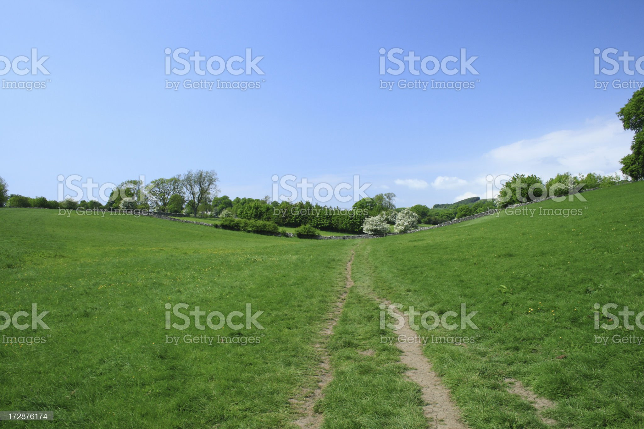 Countryside path through meadow royalty-free stock photo