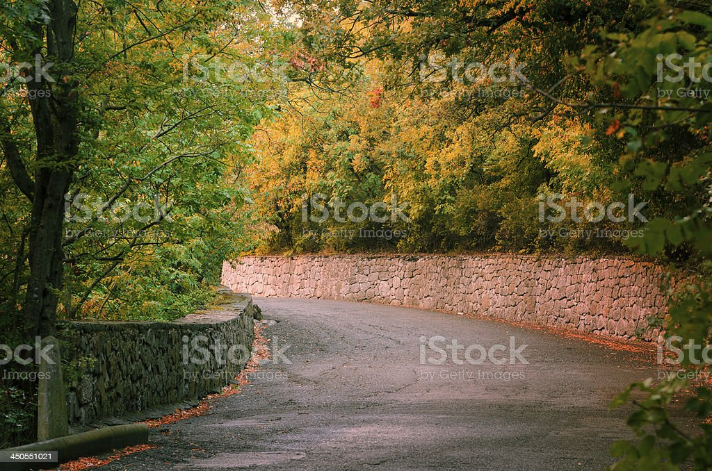Countryside road in autumn day royalty-free stock photo