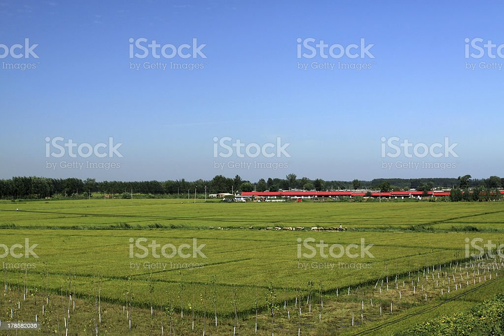 countryside scenery in northern China royalty-free stock photo