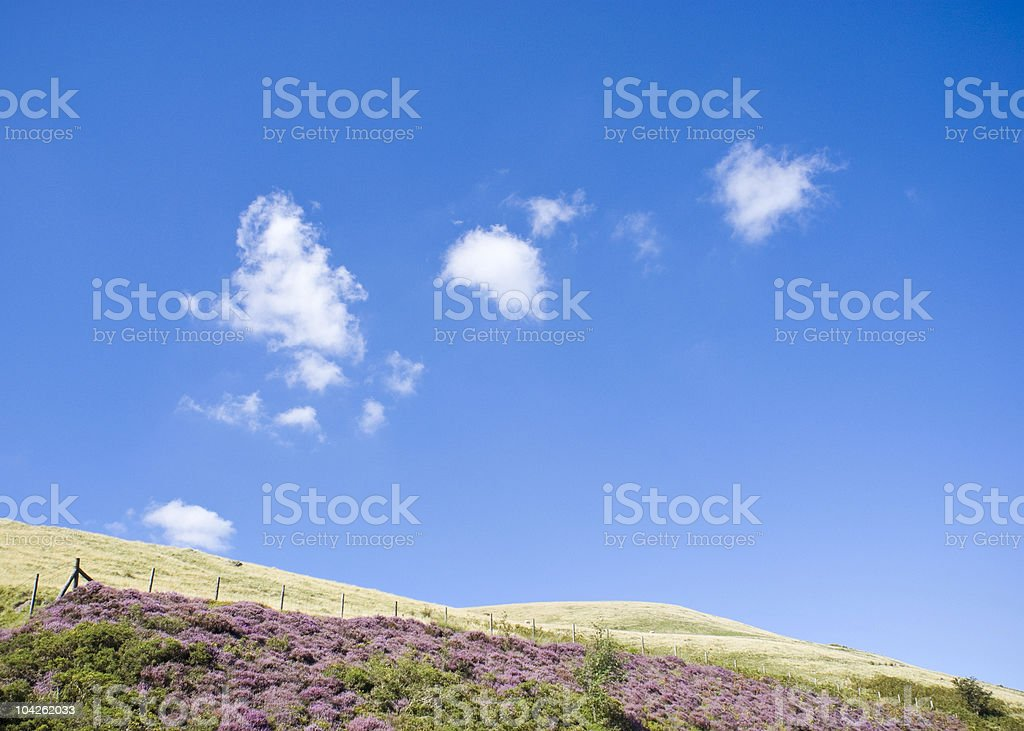 Countryside scenics royalty-free stock photo