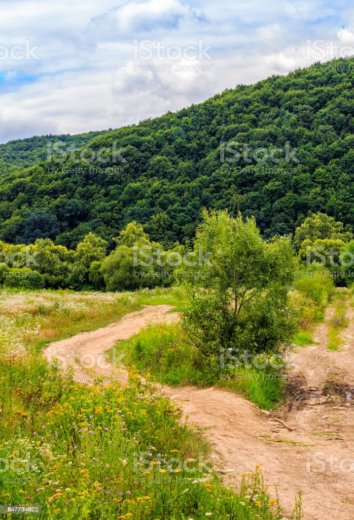 countryside summer landscape with field, forest and mountain ridge stock photo