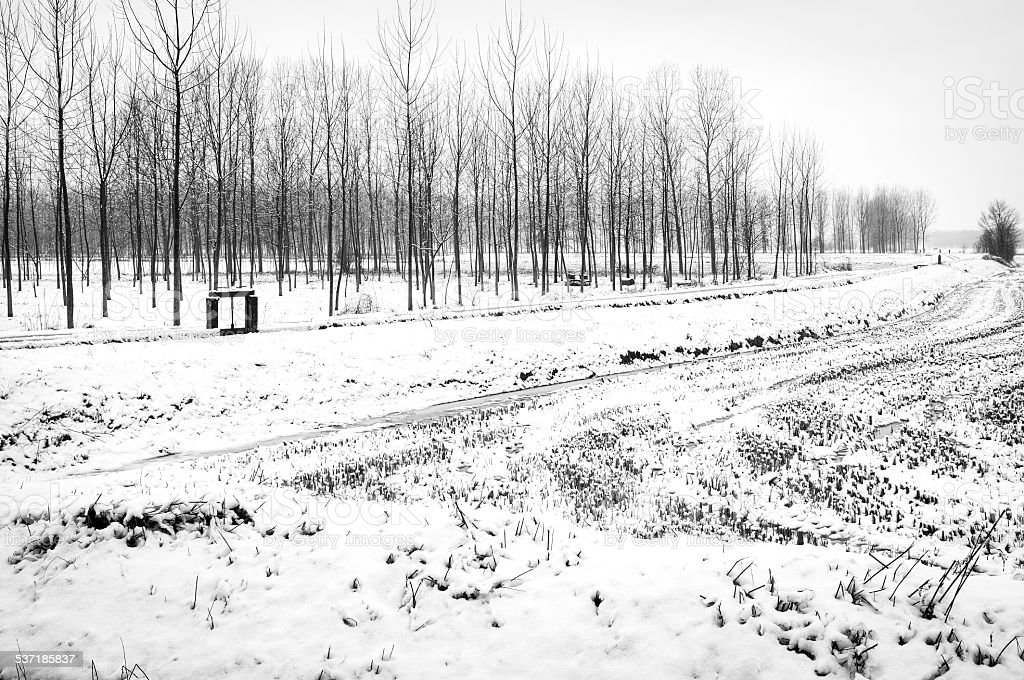 Countryside with snow. Black and white photo stock photo
