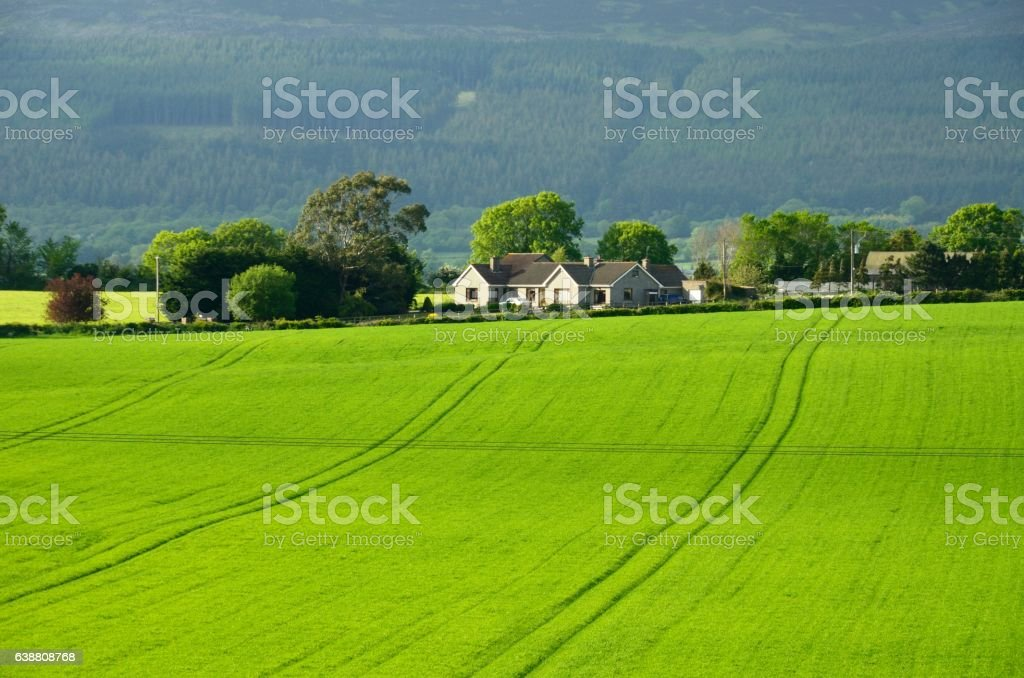 County Tipperary landscape stock photo