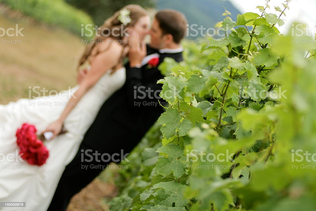 Couple about to kiss each other with sharp foreground royalty-free stock photo