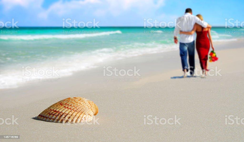 Couple and Seashell on Tropical Beach stock photo