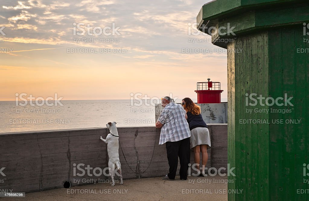 Couple and their dog admire the sunset stock photo