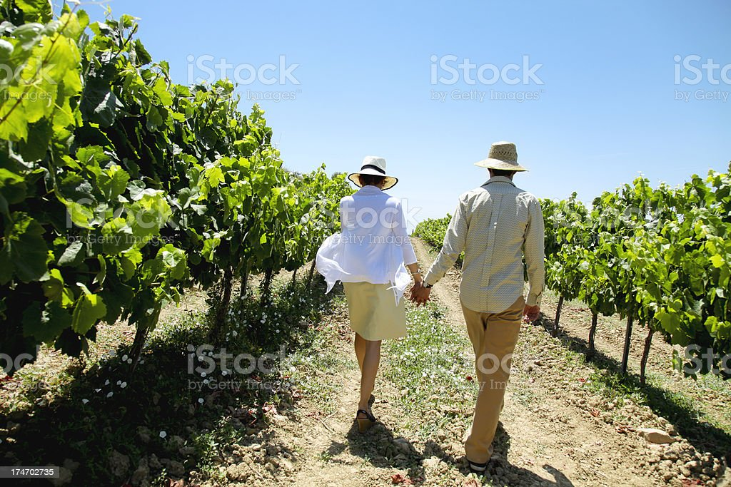 Couple at a vineyard royalty-free stock photo