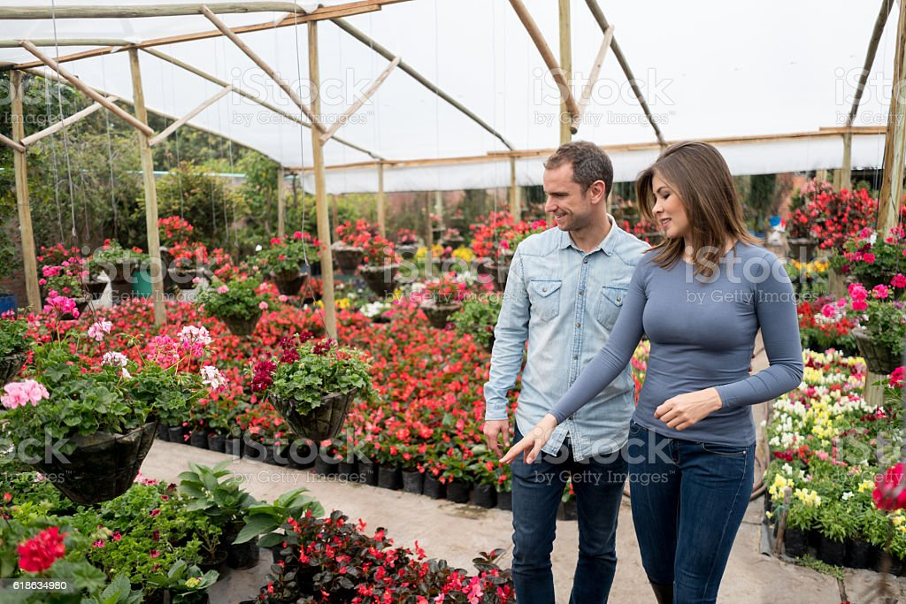 Couple at the greenhouse stock photo