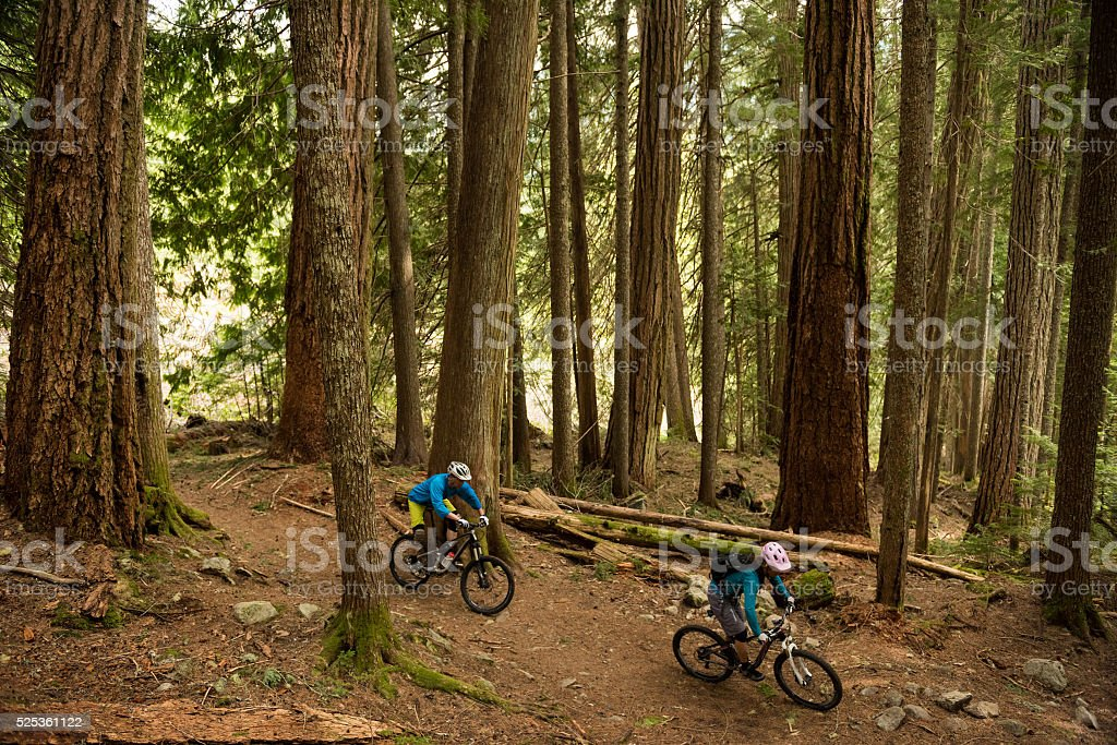 Couple biking in an old growth forest stock photo