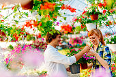 Couple buying potted flowers
