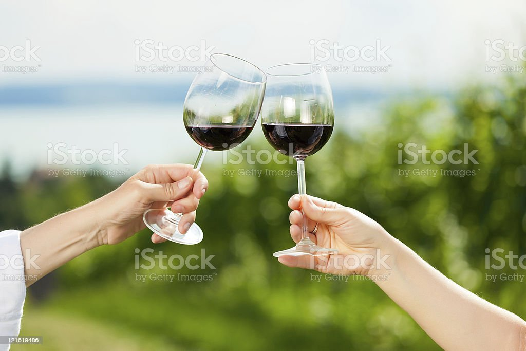 Couple drinking wine at lake in summer royalty-free stock photo