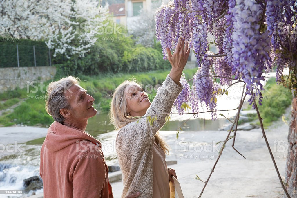 Couple gaze up at flowers in Liguria, Italy. stock photo