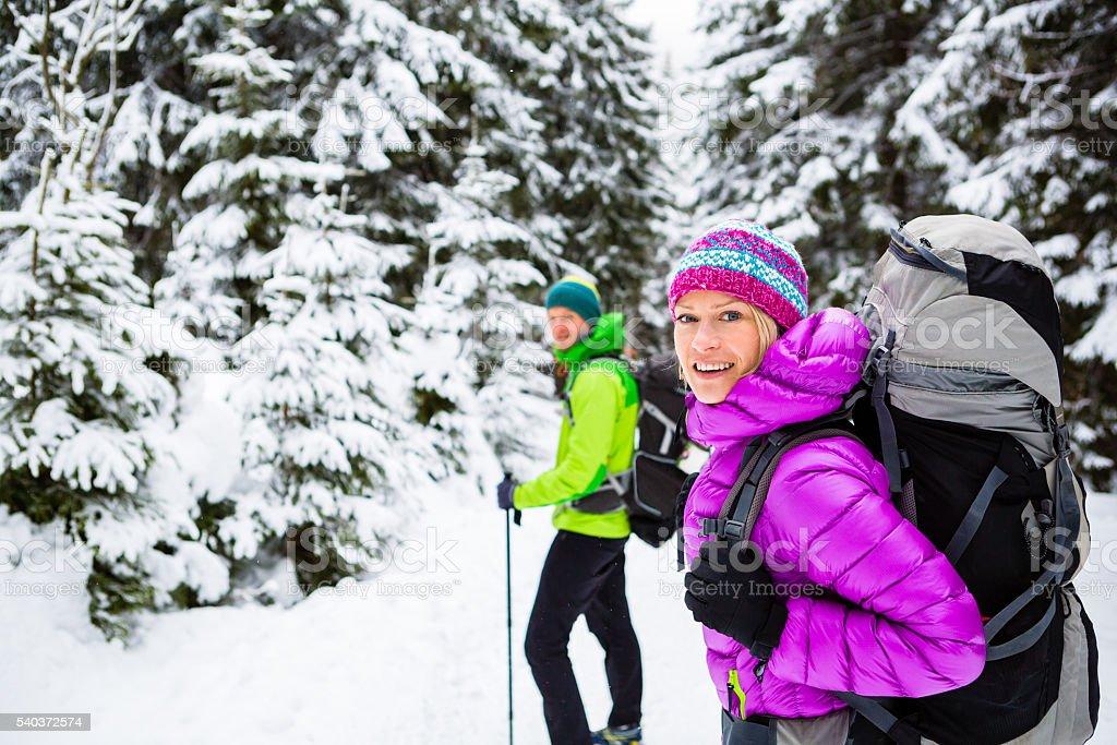 Couple hikers trekking in winter woods stock photo