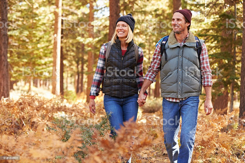 Couple holding hands walking in a forest, California, USA stock photo