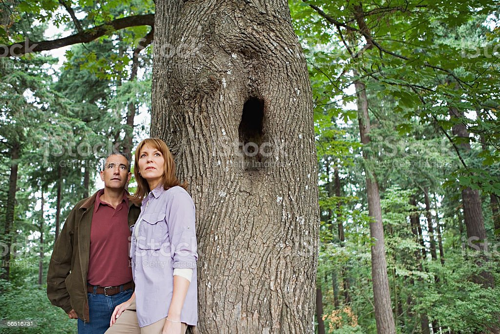 Couple in a forest stock photo