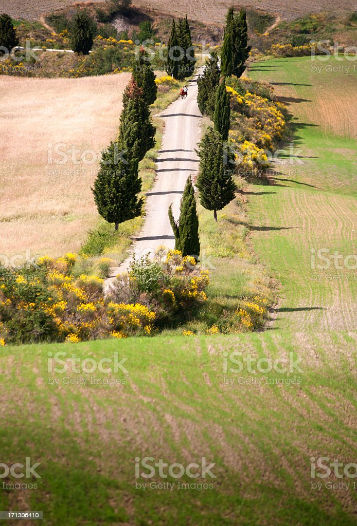 Couple in Tuscany royalty-free stock photo