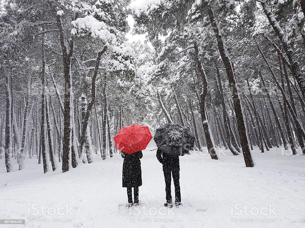 couple in winter stock photo