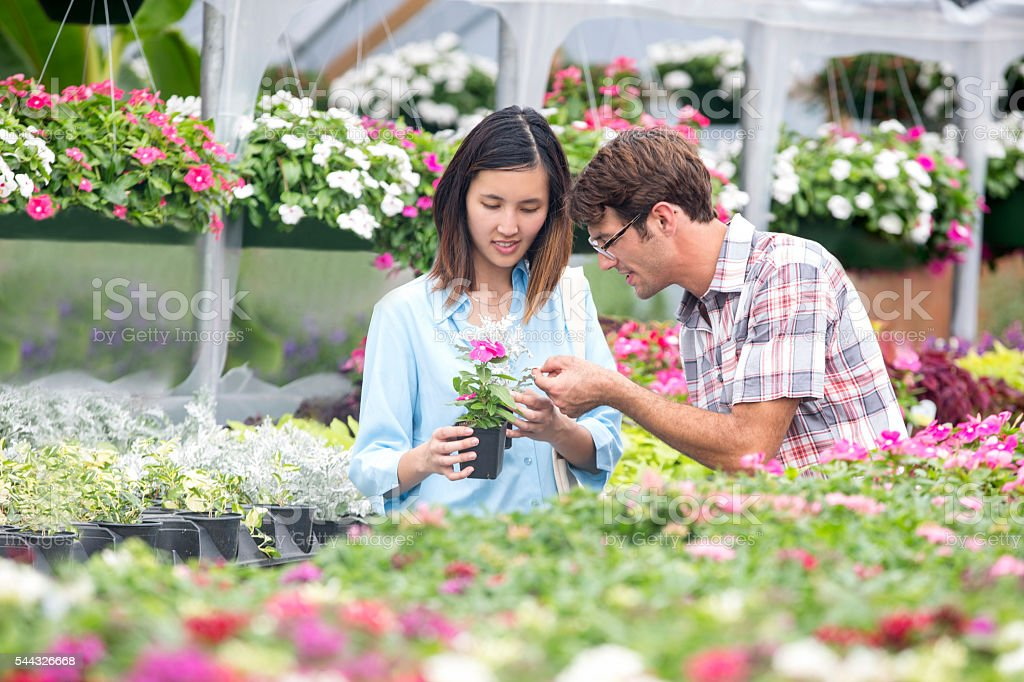 Couple look at flowers at outdoor plant nursery stock photo