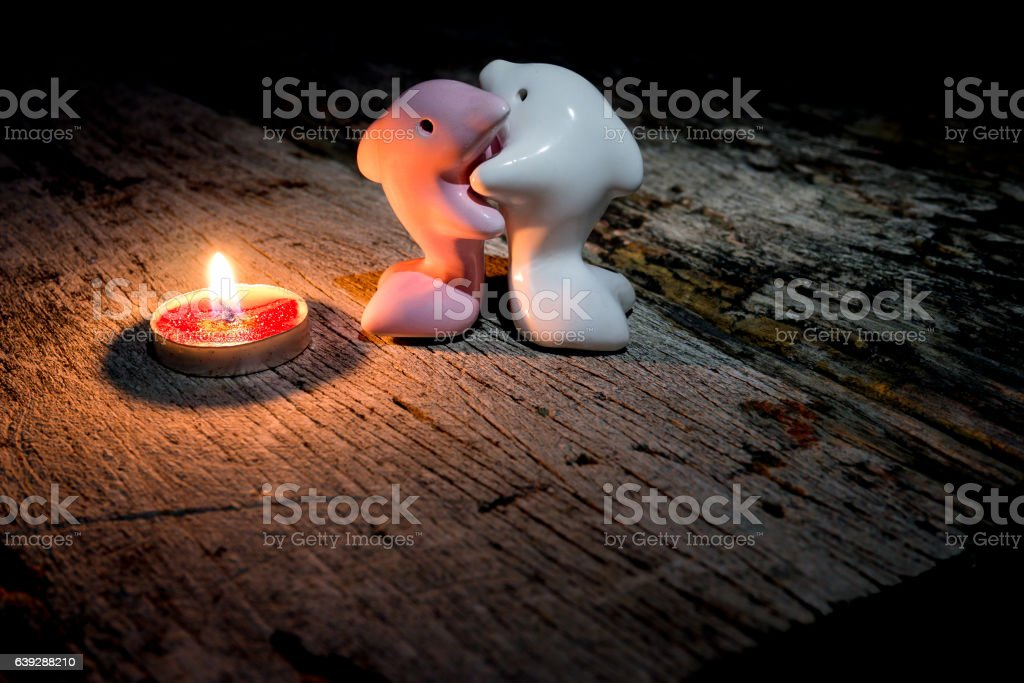 Couple lovers dolphin and in the light red candle. stock photo