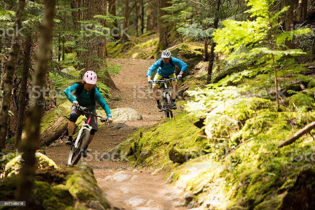 Couple mountain biking through a forest stock photo