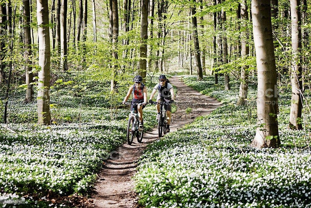 Couple mountain biking together stock photo