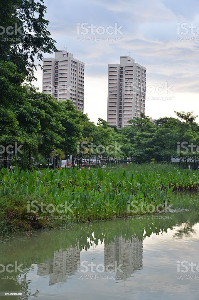 Couple of high rise buildings in Singapore seen from park royalty-free stock photo