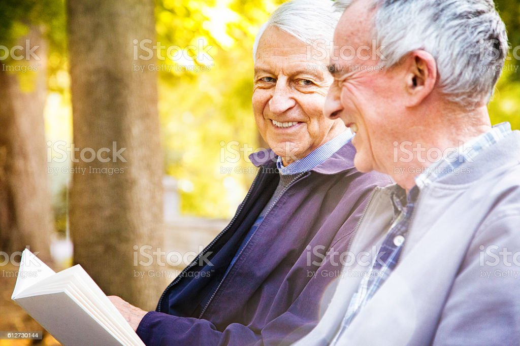 Couple of senior men sharing stories in park stock photo