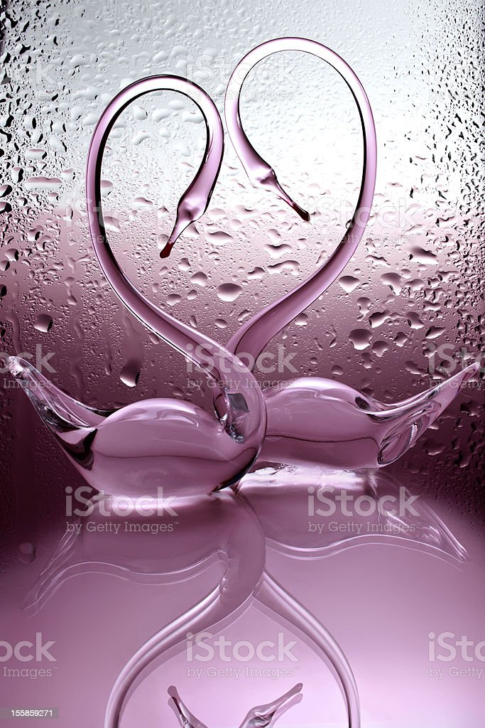 couple of swans on the pink background royalty-free stock photo