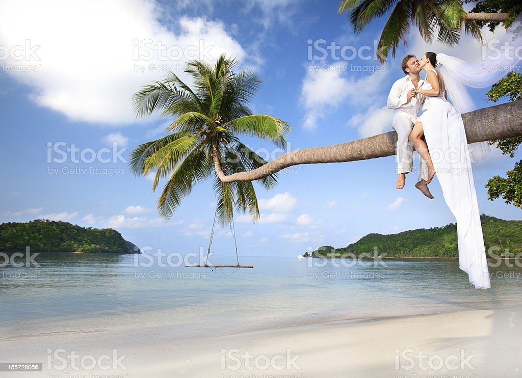 Couple perched on a palm tree over tropical water stock photo