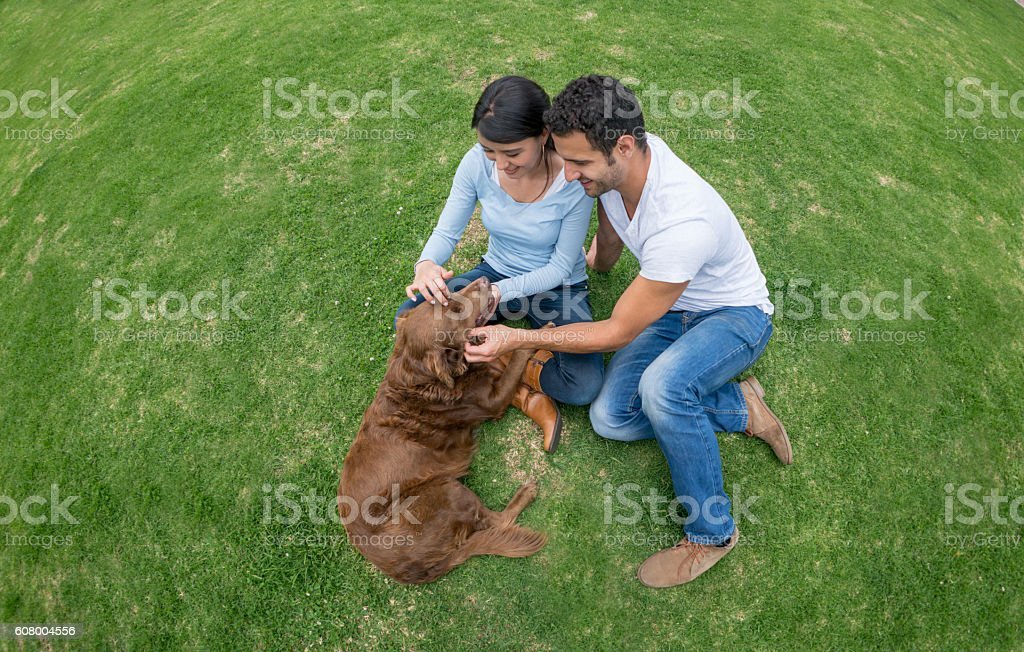 Couple playing with their adopted dog stock photo