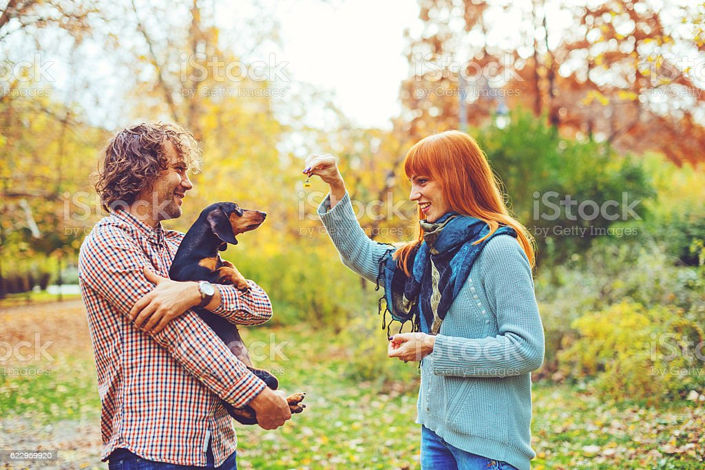 Couple playing with their dog stock photo