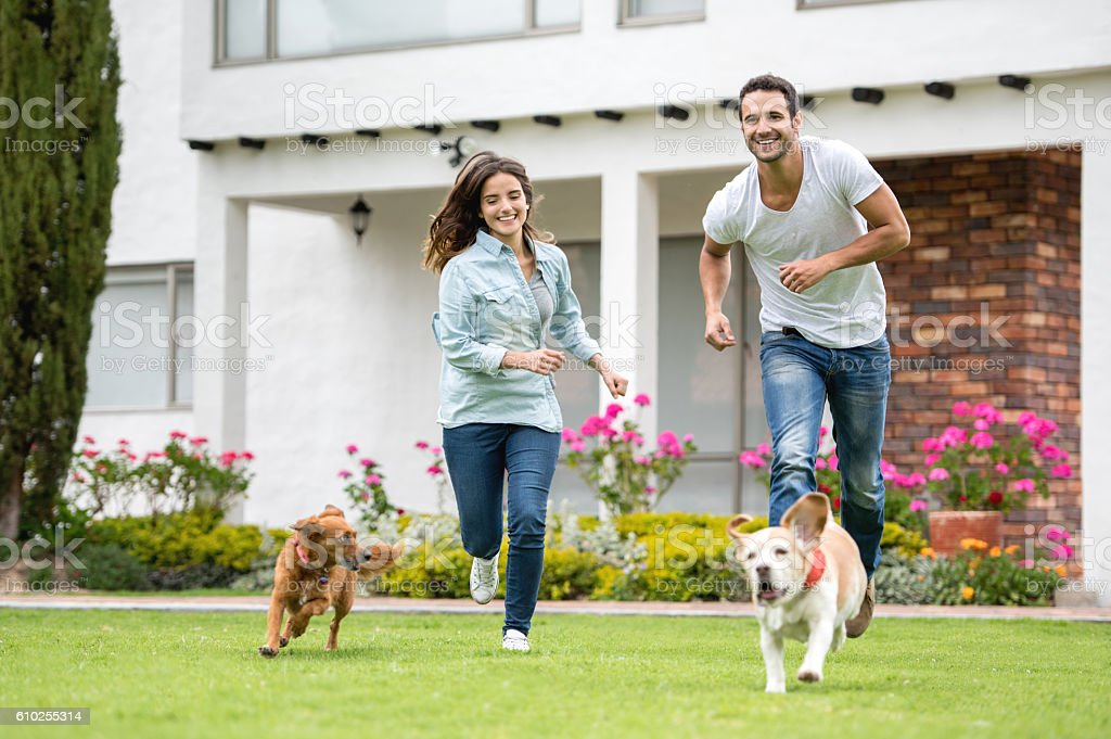 Couple playing with their dogs outdoors stock photo