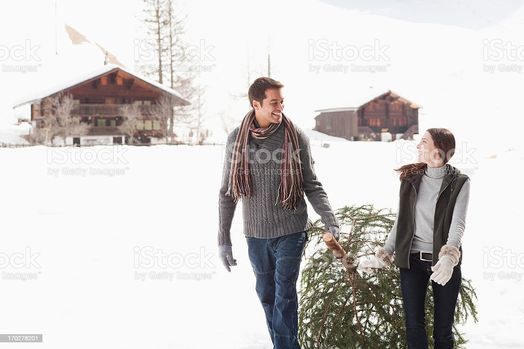 Couple pulling Christmas tree in woods royalty-free stock photo