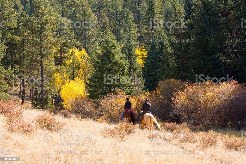 Couple Riding Horses in Autumn Aspen Leaves stock photo