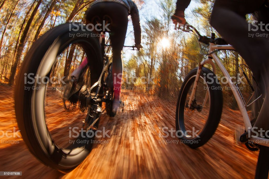 Couple riding mountain bikes through the woods during autumn. stock photo