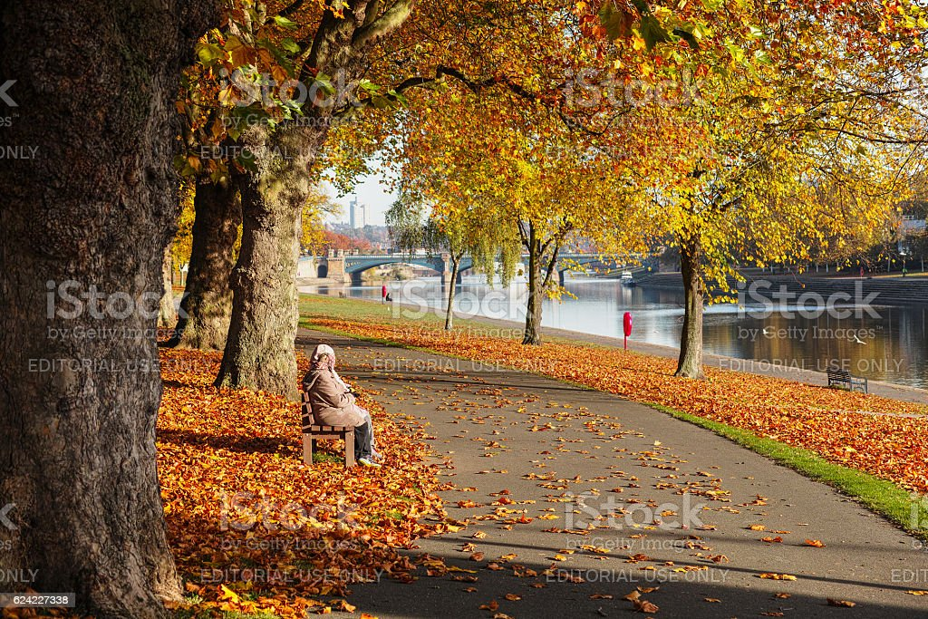 Couple sitting on bench surrounded by orange leaves during Autumn. stock photo