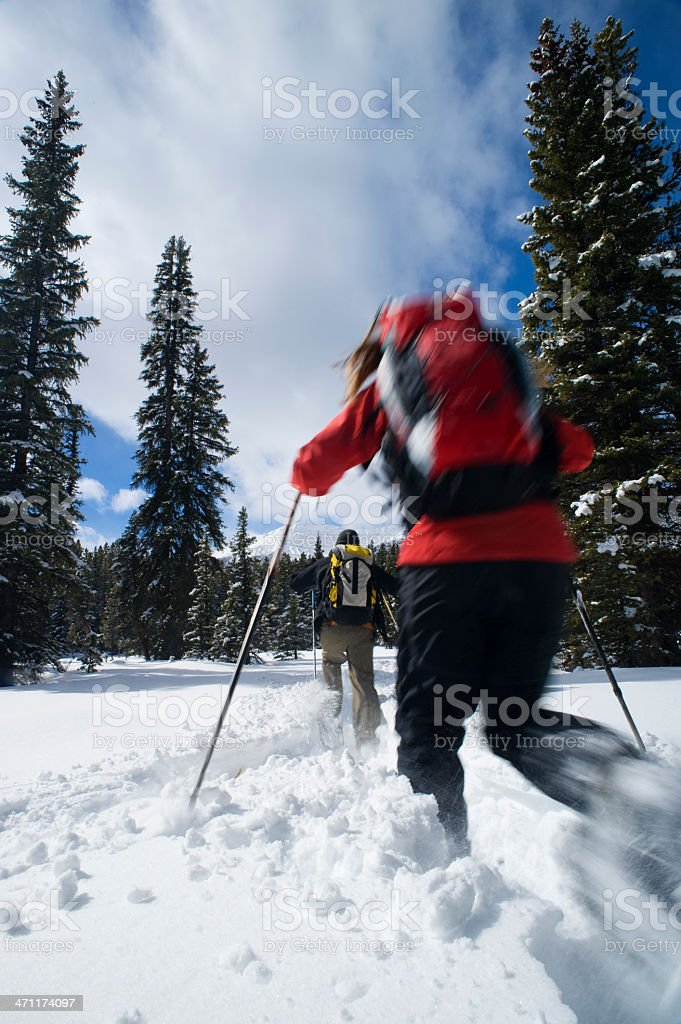 Couple snowshoeing royalty-free stock photo