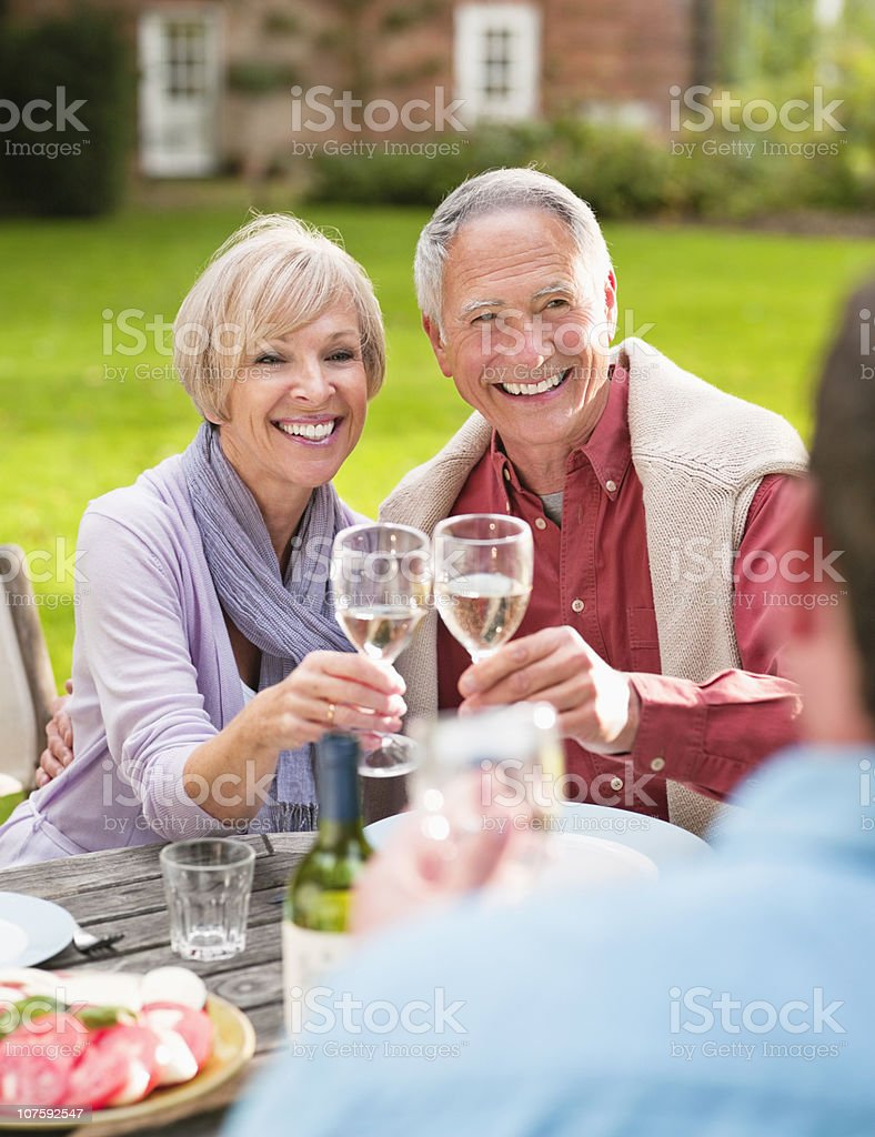 Couple toasting wine glasses on picnic at park royalty-free stock photo