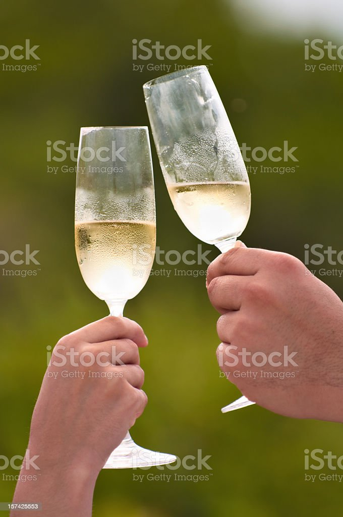 Couple toasting with champagne during celebration event royalty-free stock photo