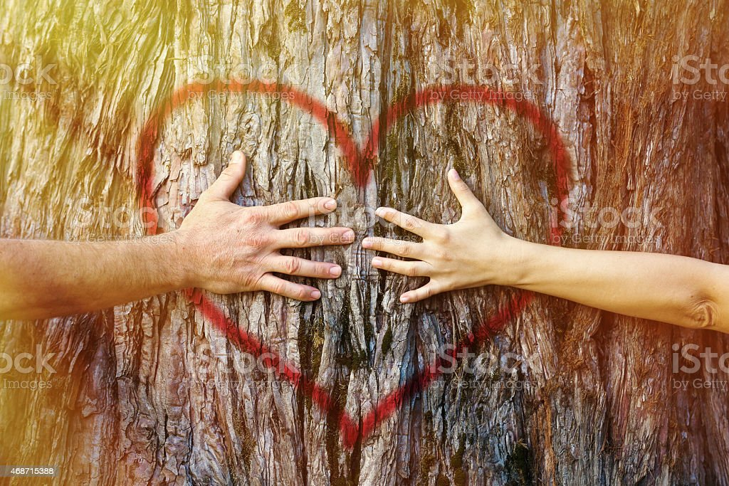 Couple touching heart in sunlight stock photo