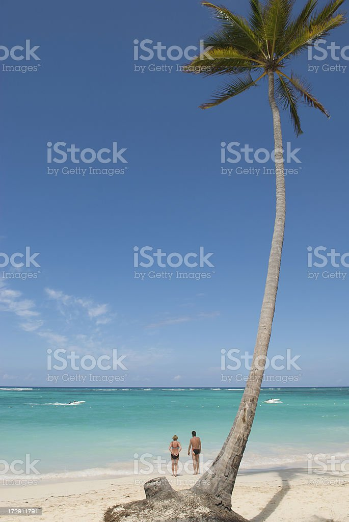 Couple Under the Palm royalty-free stock photo