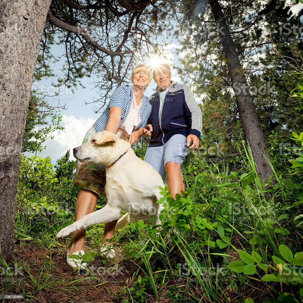 Couple Walk in the Woods royalty-free stock photo
