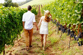 Couple walking away, hand in hand, through beautiful vineyard