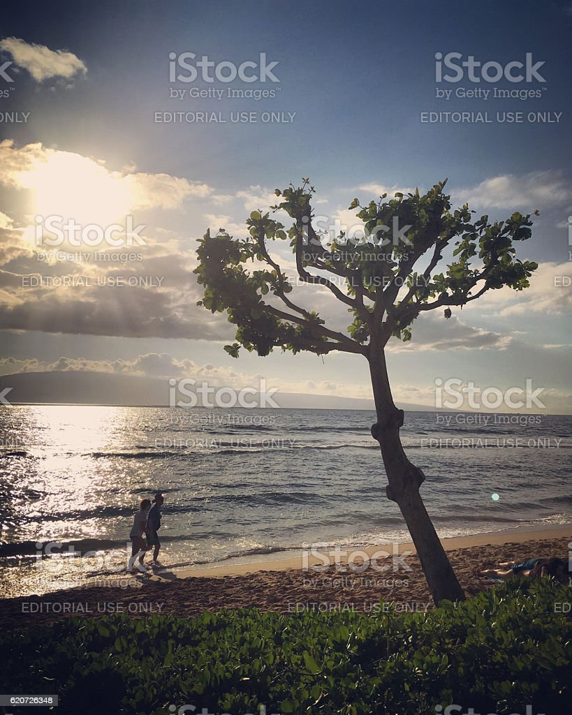 Couple walking on the beach, Maui, Hawaii, USA stock photo