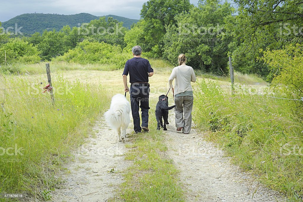 Couple walking two dogs in countryside royalty-free stock photo