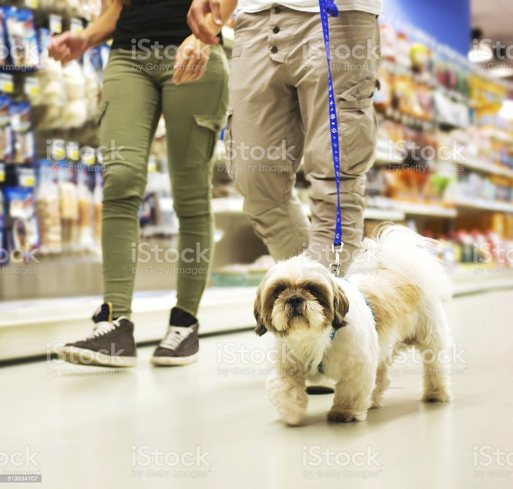 Couple With dog Shopping in Pet Store stock photo